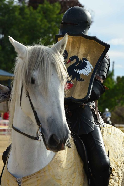 Black knight on white horse